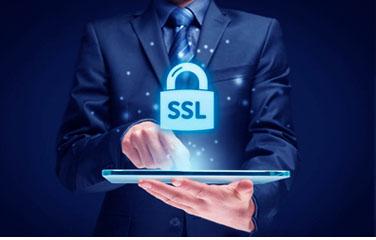 站神支持SSL证书服务包(无证书)